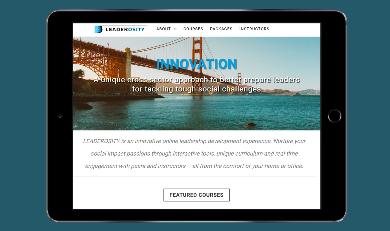 Leaderosity Website